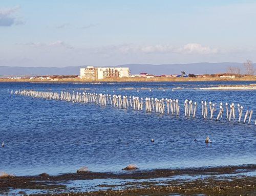Поморийское соленое озеро